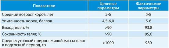 Сравнительные показатели продуктивности маточного стада